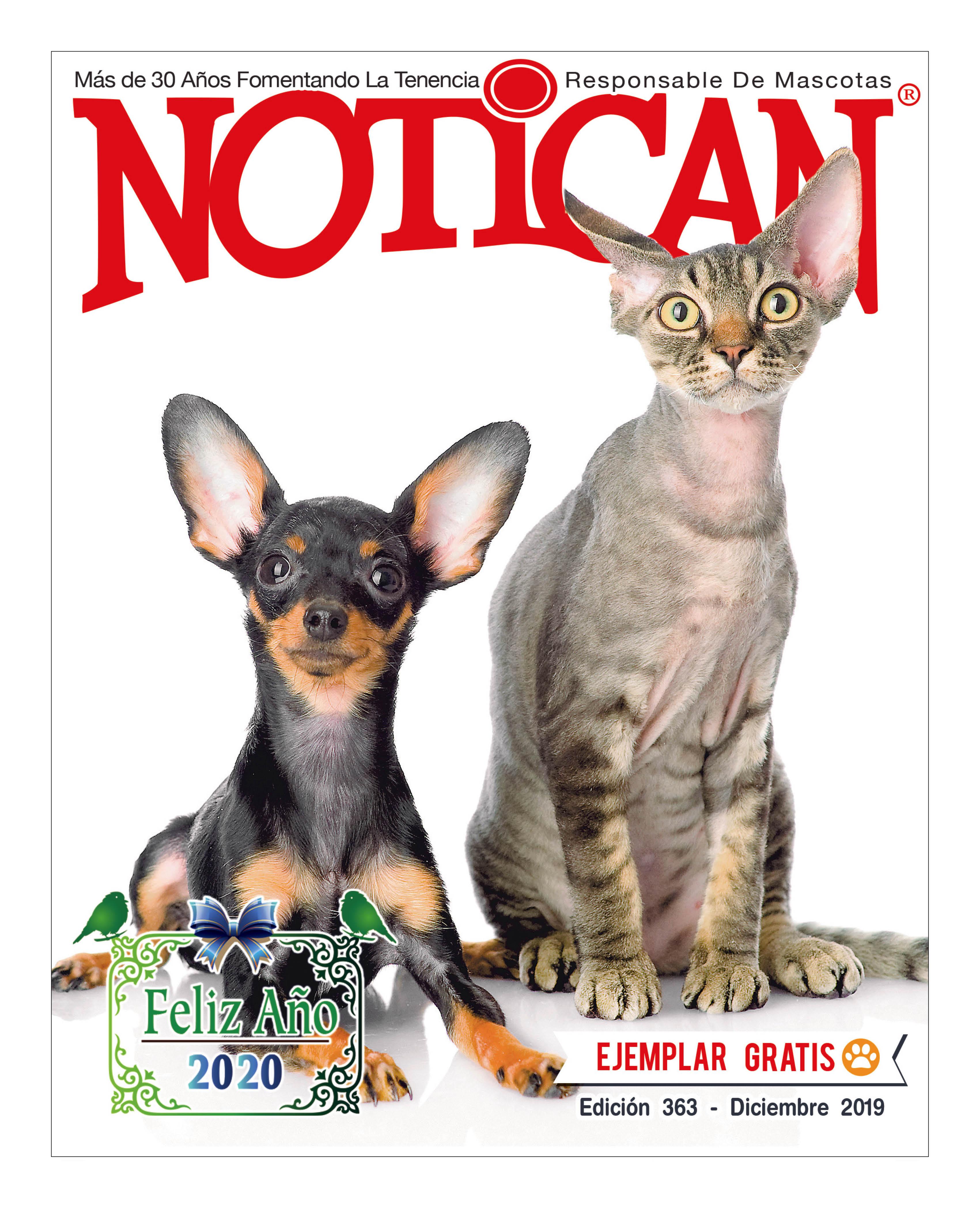 https://www.notican.com/wp-content/uploads/2017/05/Notican-Diciembre-2019.jpg