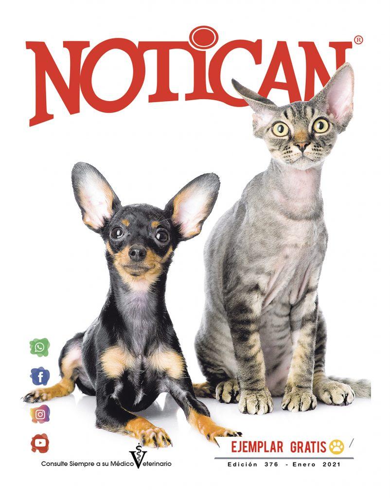 http://www.notican.com/wp-content/uploads/2017/05/Notican-ED-enero-2021--802x1024.jpg