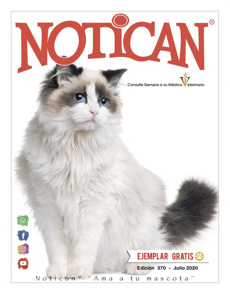 http://www.notican.com/wp-content/uploads/2017/05/Notican-Julio-24p2020--802x1024.jpg