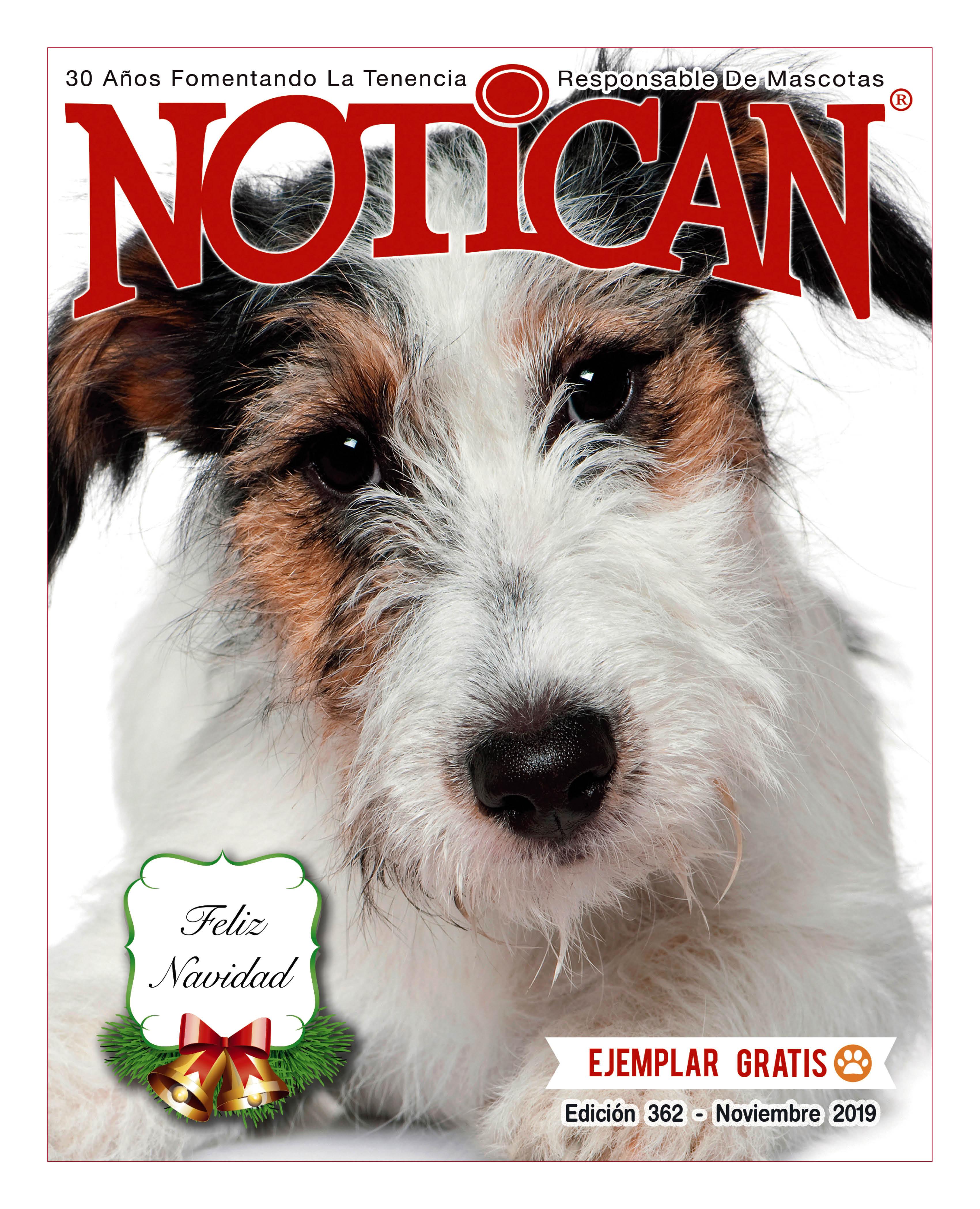 https://www.notican.com/wp-content/uploads/2017/05/Notican-Noviembre-2019.jpg