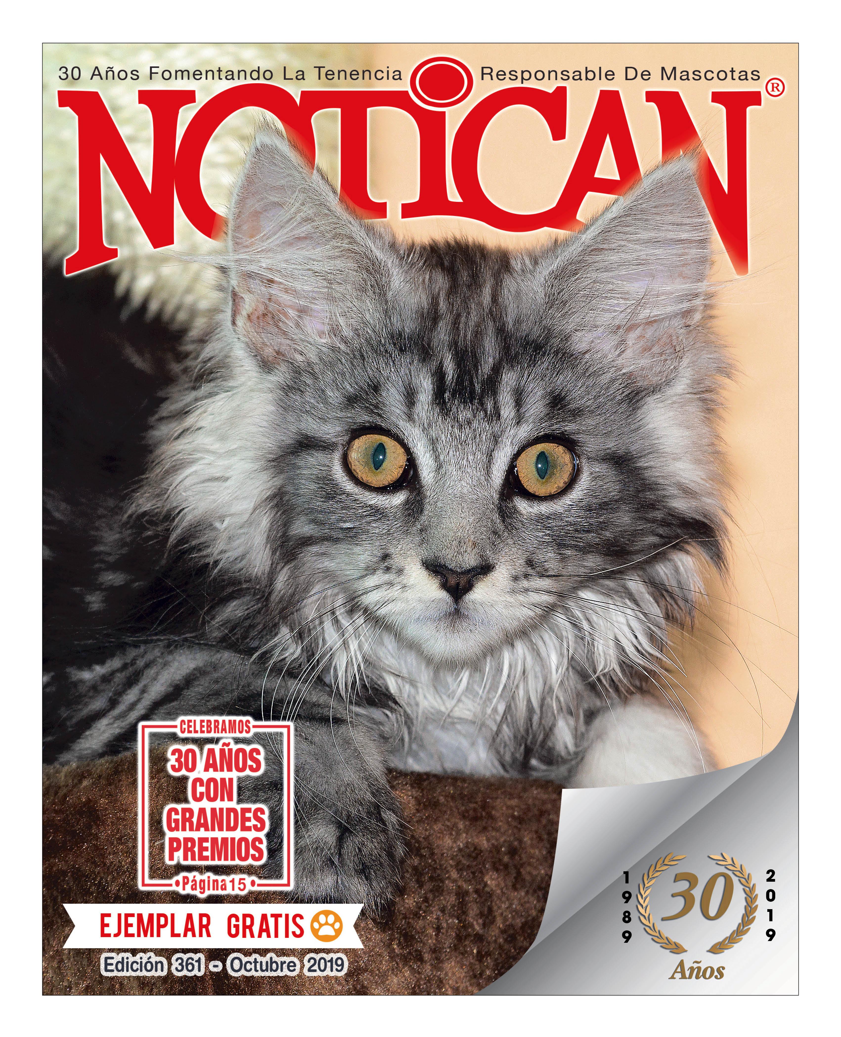 http://www.notican.com/wp-content/uploads/2017/05/Notican-Octubre-2019.jpg