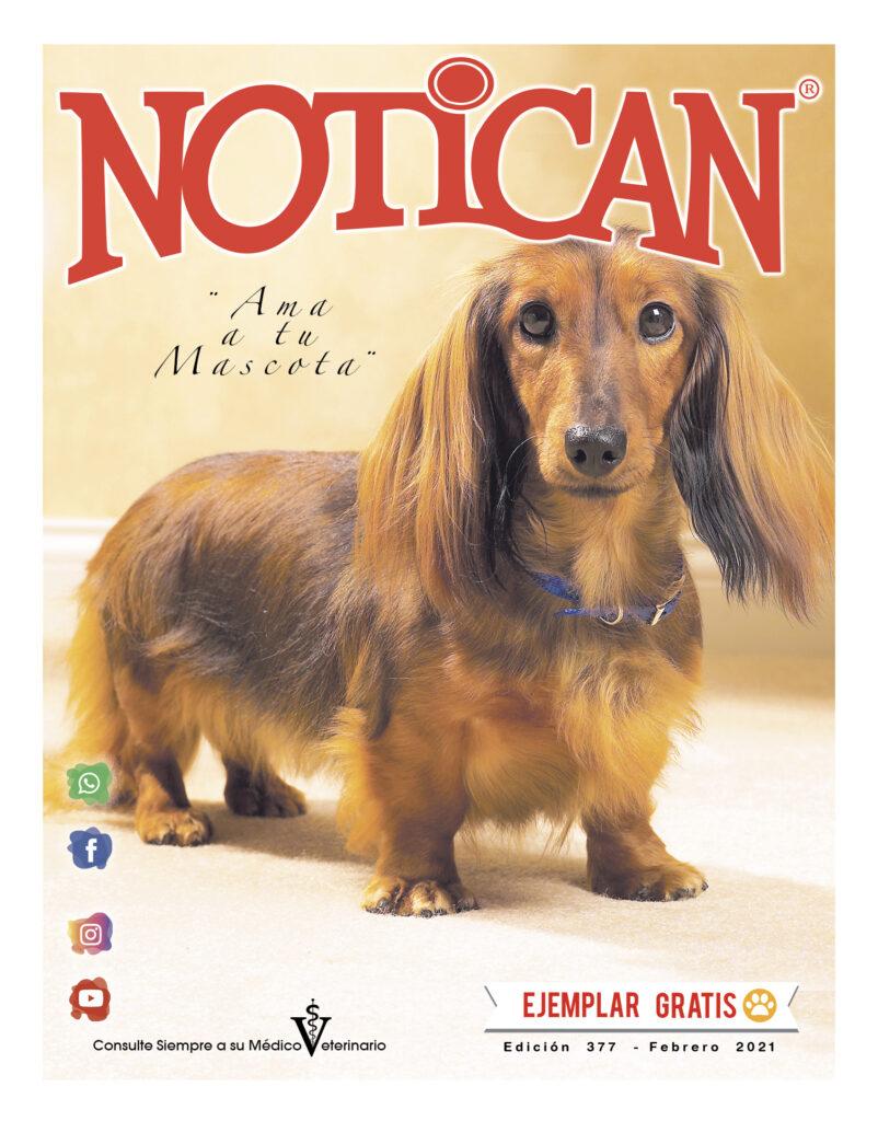 http://www.notican.com/wp-content/uploads/2017/05/Notican-febrero-24-p.-2021--802x1024.jpg