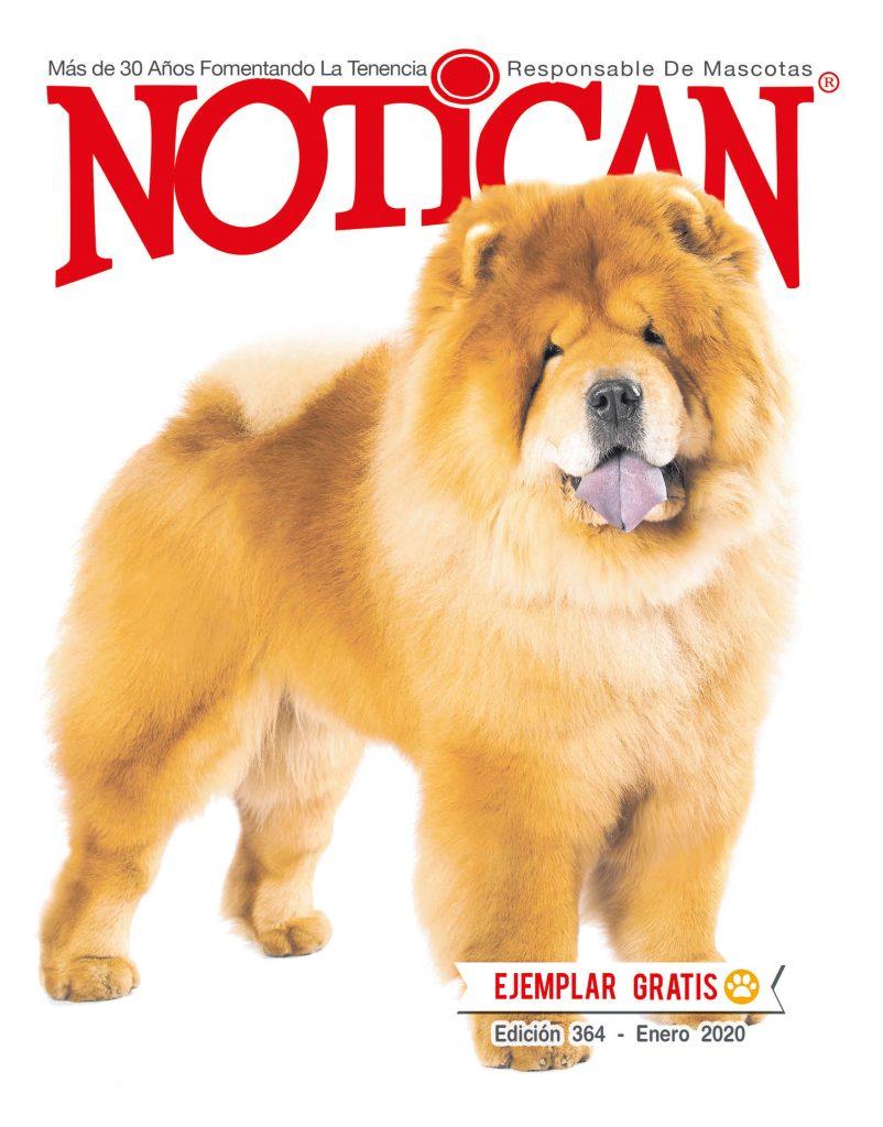 https://www.notican.com/wp-content/uploads/2017/05/Nuevo-Notican-enero-2020-Nación--802x1024.jpg