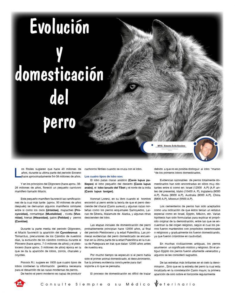 https://www.notican.com/wp-content/uploads/2017/05/Nuevo-Notican-enero-2020-Nación-20-802x1024.jpg