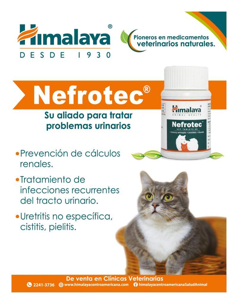 https://www.notican.com/wp-content/uploads/2017/05/Nuevo-Notican-enero-2020-Nación-5-802x1024.jpg