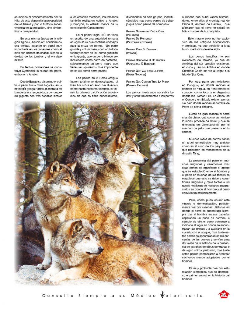 http://www.notican.com/wp-content/uploads/2017/05/Nuevo-Notican-enero-2020-Nación-21-802x1024.jpg