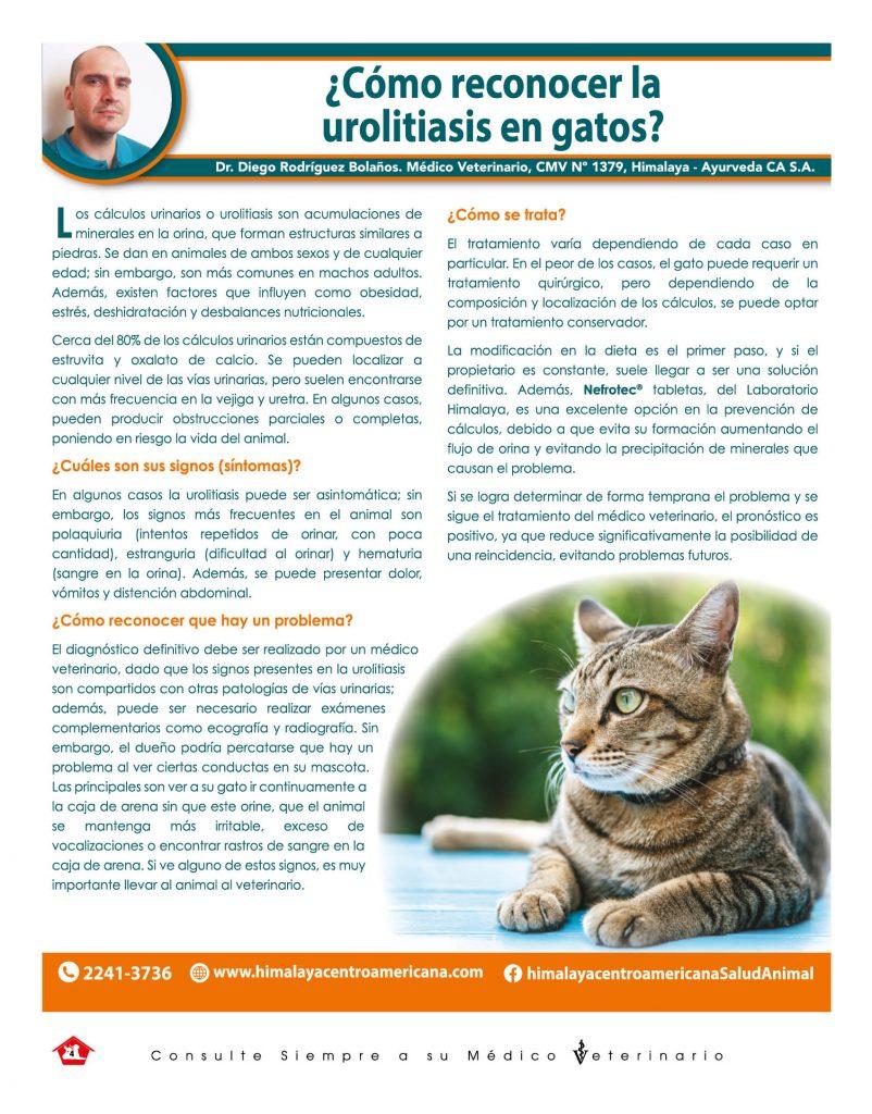 http://www.notican.com/wp-content/uploads/2017/05/Nuevo-Notican-enero-2020-Nación-4-802x1024.jpg