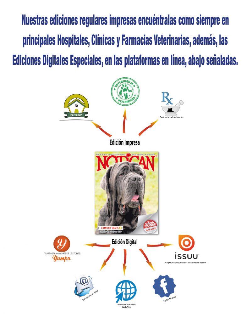 http://www.notican.com/wp-content/uploads/2017/05/Nuevo-Notican-febrero-2020-14-802x1024.jpg