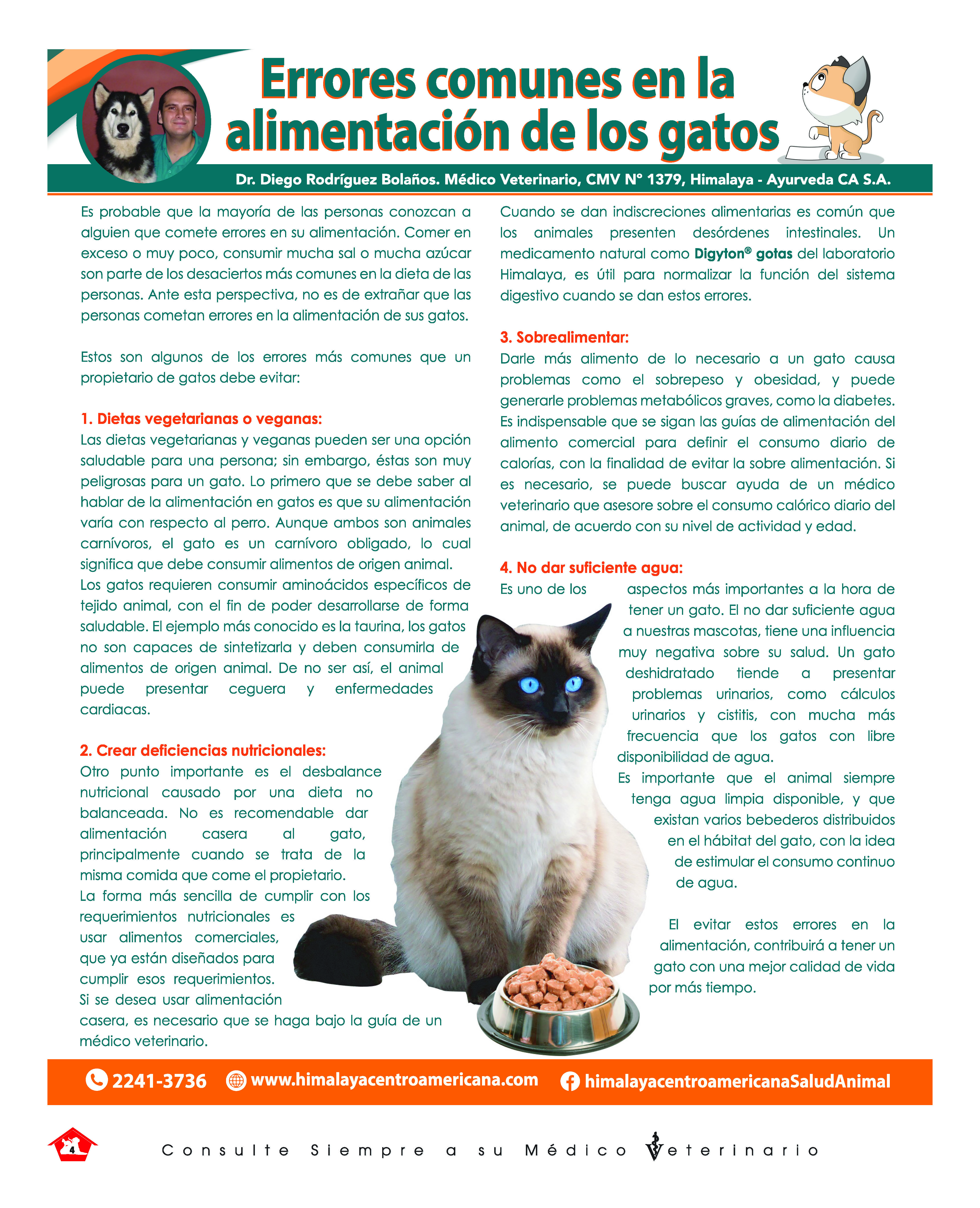 https://www.notican.com/wp-content/uploads/2019/10/Notican-Setiembre-2019-copy_Página_04.jpg