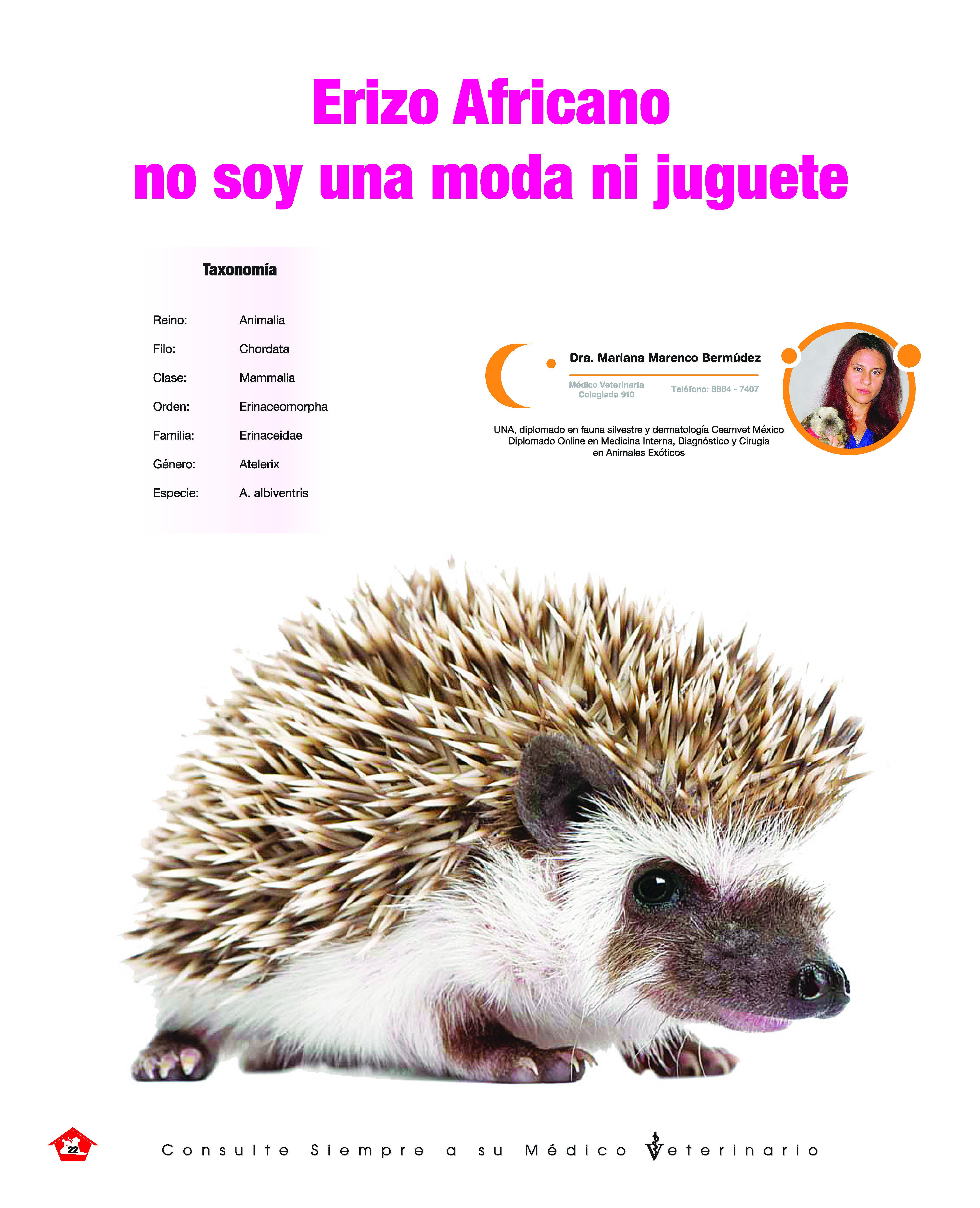 https://www.notican.com/wp-content/uploads/2019/10/Notican-Setiembre-2019-copy_Página_22.jpg