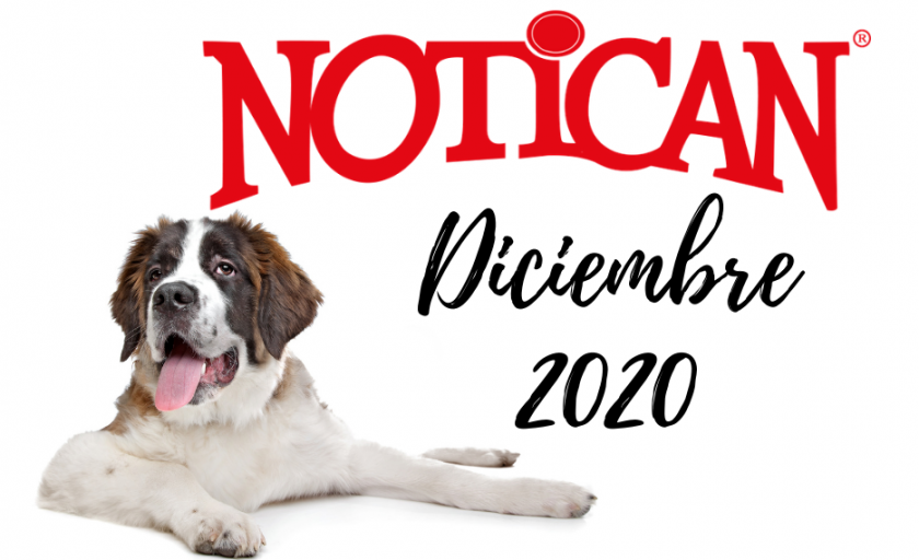 Diciembre 2020